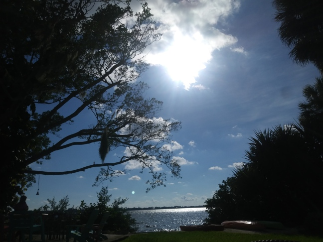 Sunlight embodies life...
